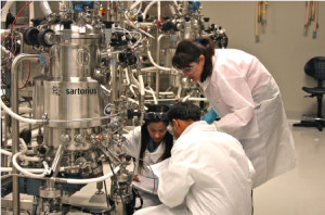 May 10, 2011 – Trainees participate in a hands-on activity in the intermediate scale upstream processing lab during the BARDA-sponsored Fundamentals of cGMP Influenza Vaccine Manufacturing course at BTEC