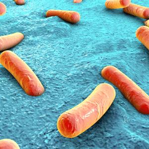 antimicrobial testing